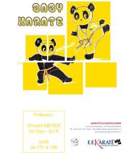 Entrainement Baby Karaté @ Baby Karaté | Geispolsheim | Alsace | France