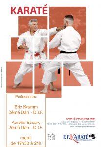 Entrainement Karaté ados & adultes @ Entrainement Karaté  | Geispolsheim | Alsace | France